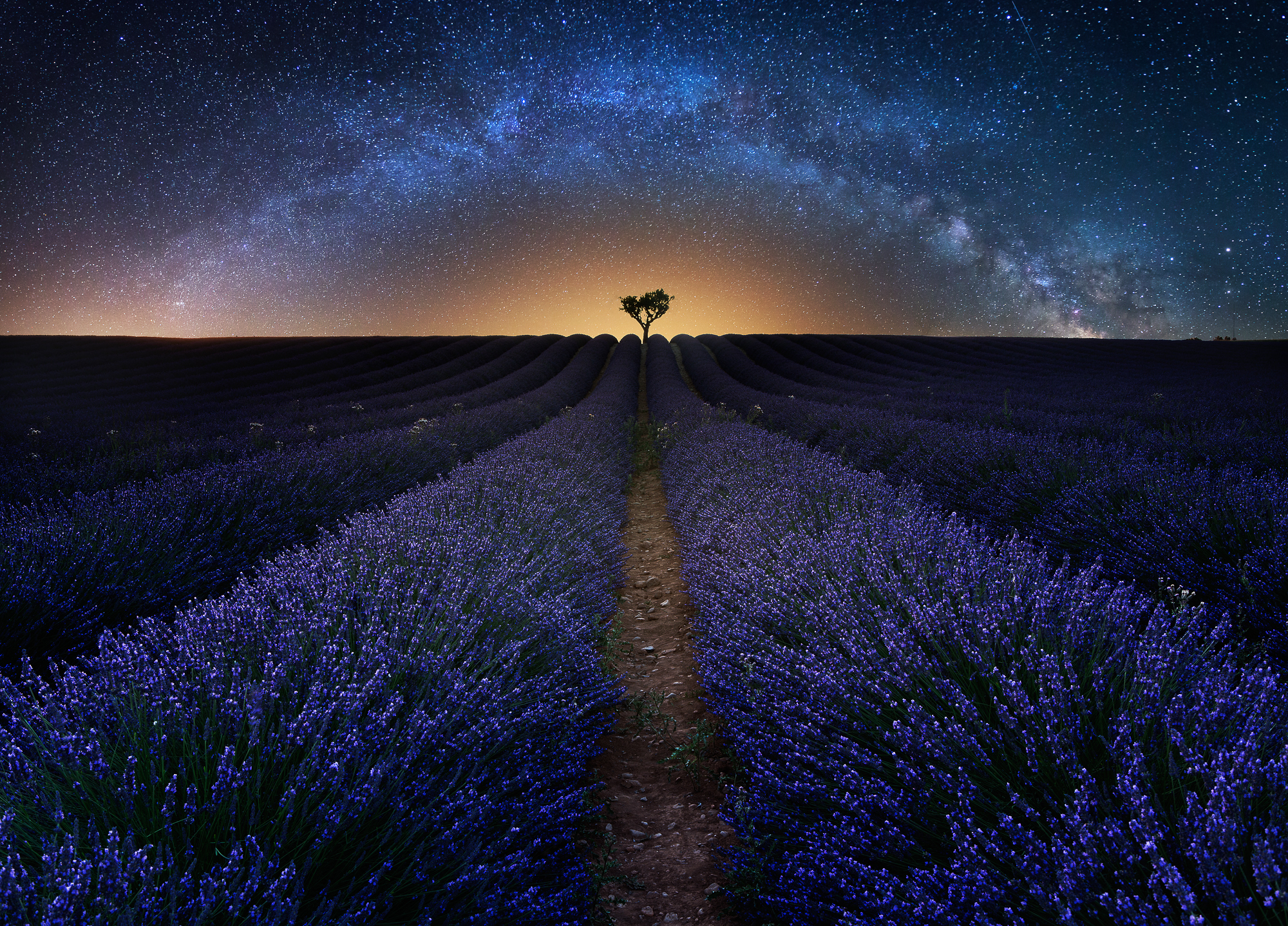 Valensole-Lavendar-Milkyway-France