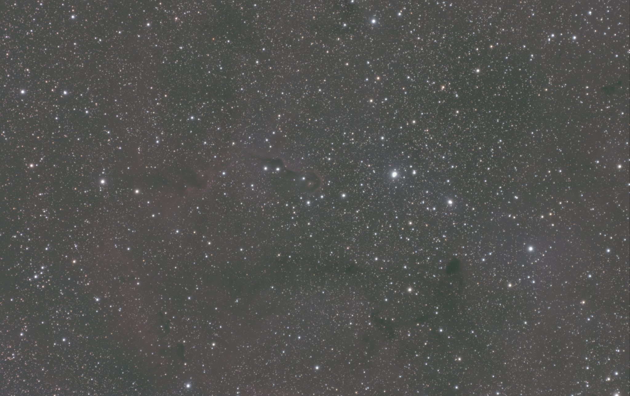 IC1396-Trunk-unprocessed-slider