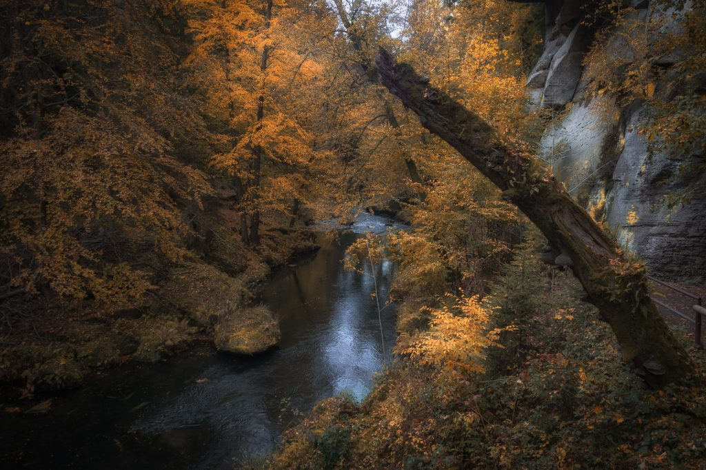 Bohemian-Switzerland-Czech Republic-Kamnitz Gorge Autumn